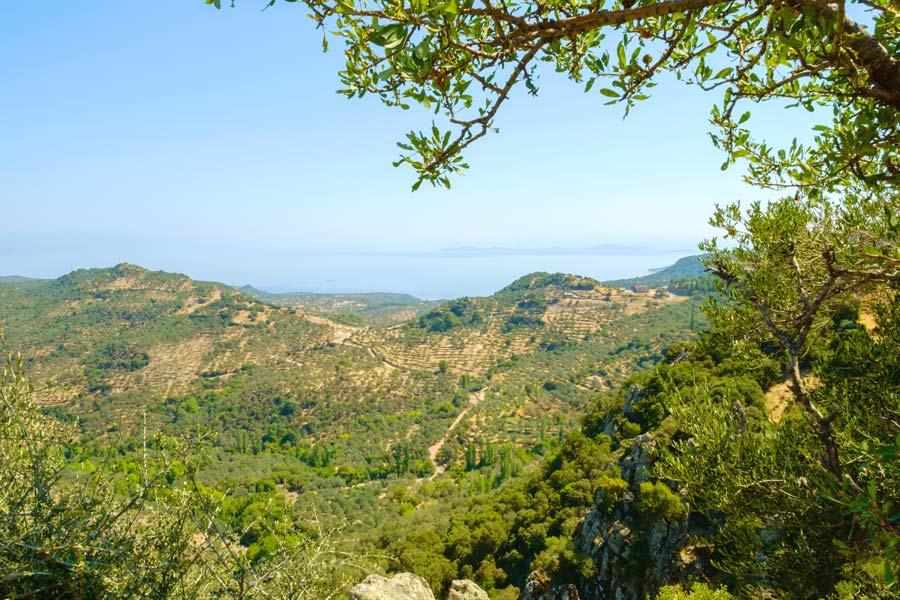 Vandring på Lesvos i Grækenland