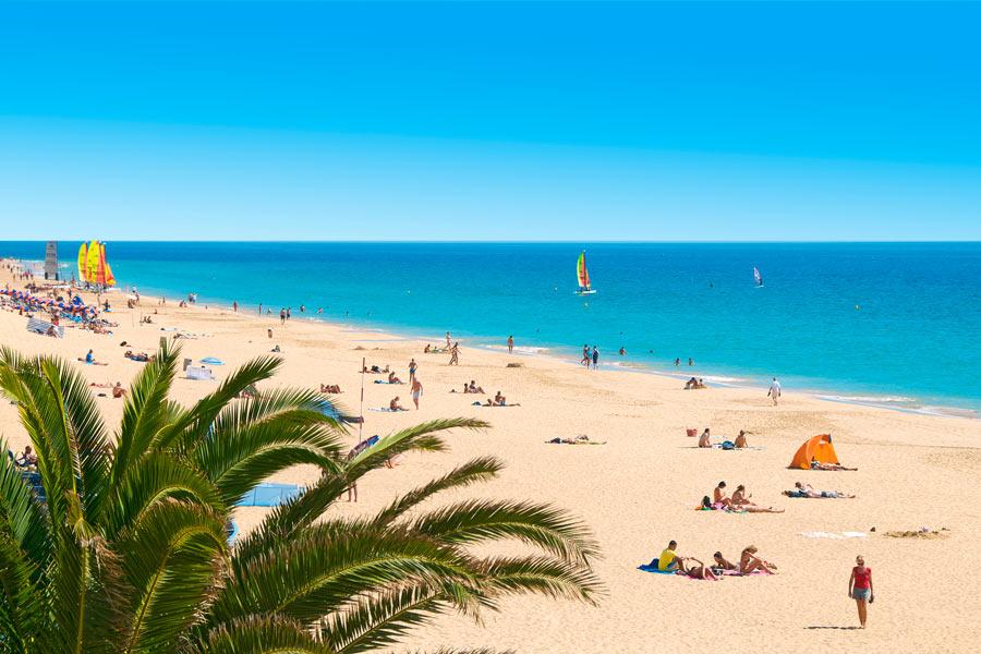 Vinterrejser til Fuerteventura