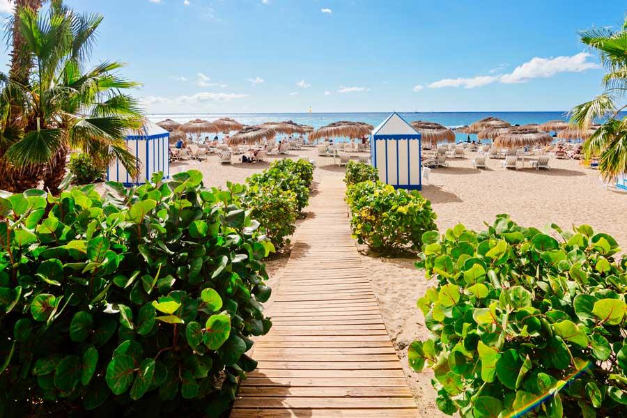 Vinterrejser til Tenerife