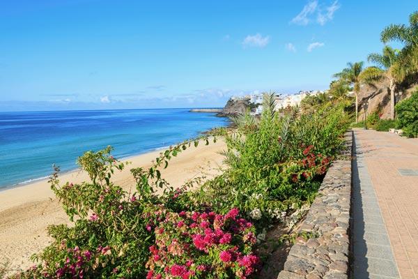 Billige rejser til Fuerteventura i februar