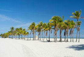 Coconut Grove & Key Biscayne